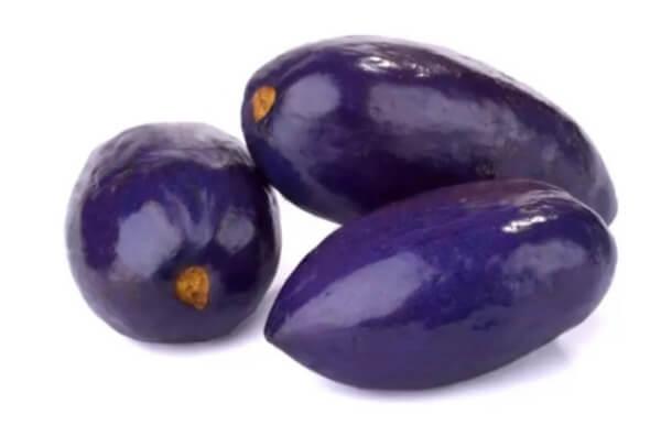 Pelure de prune africaine